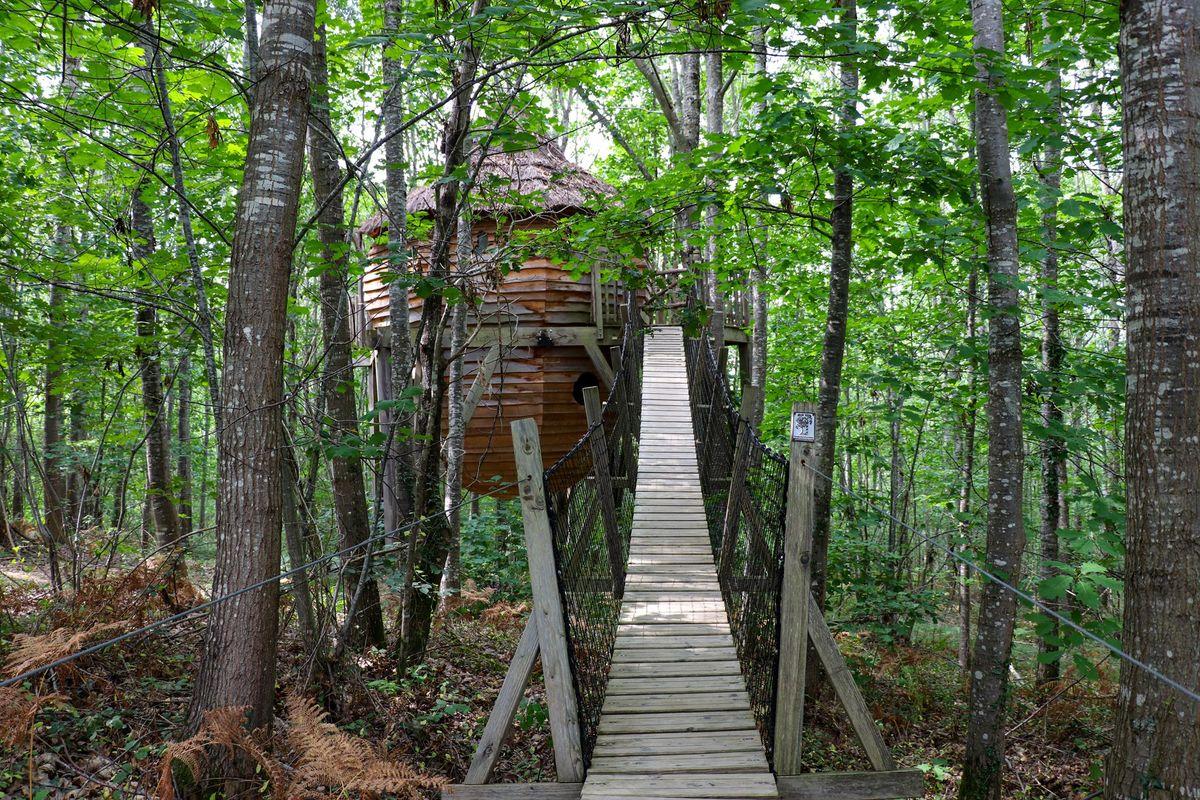 Dormir en haut des arbres, une expérience à vivre dans les cabanes des Nids du Béarn