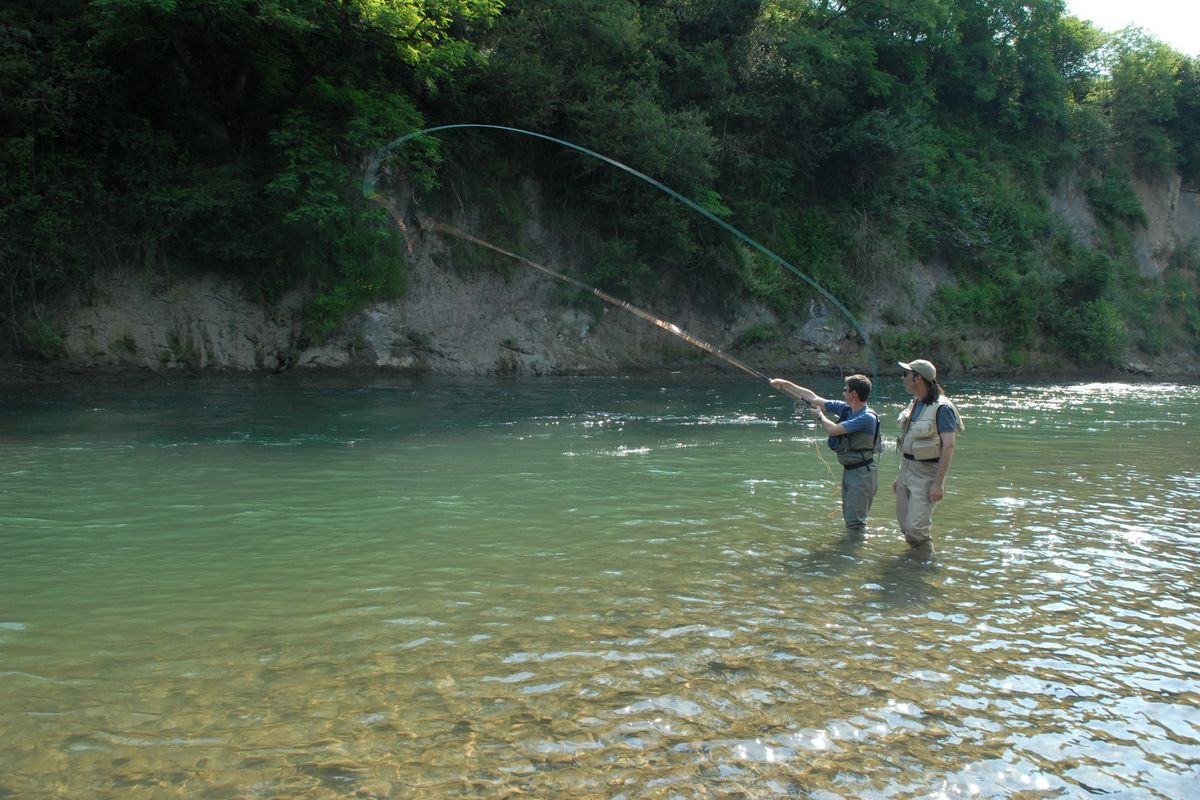 Salmon fishing in the Gave d'Oloron