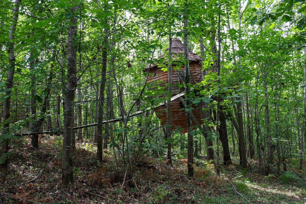 Domaine boisé aux Nids du Béarn et ses cabanes