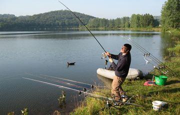 Pêche à la carpe en Béarn