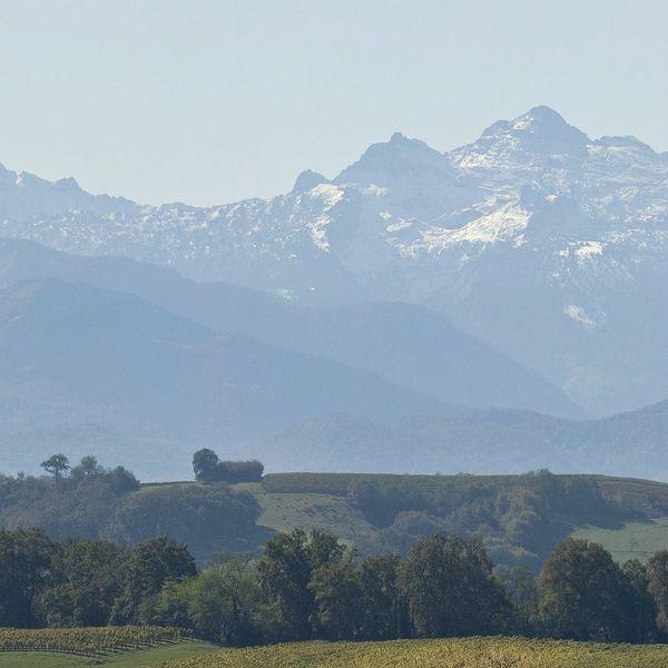 Vue sur les Pyrénées en Coeur de Béarn