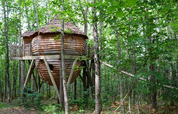 La cabane familiale et sa passerelle aux Nids du Béarn à Loubieng