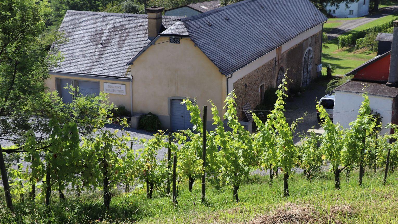 Domaine Bellegarde - MONEIN