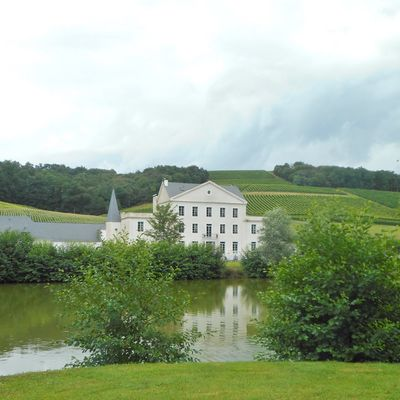 Château Roquehort - MONEIN