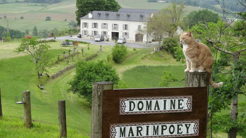 Domaine Marimpoey - MONEIN