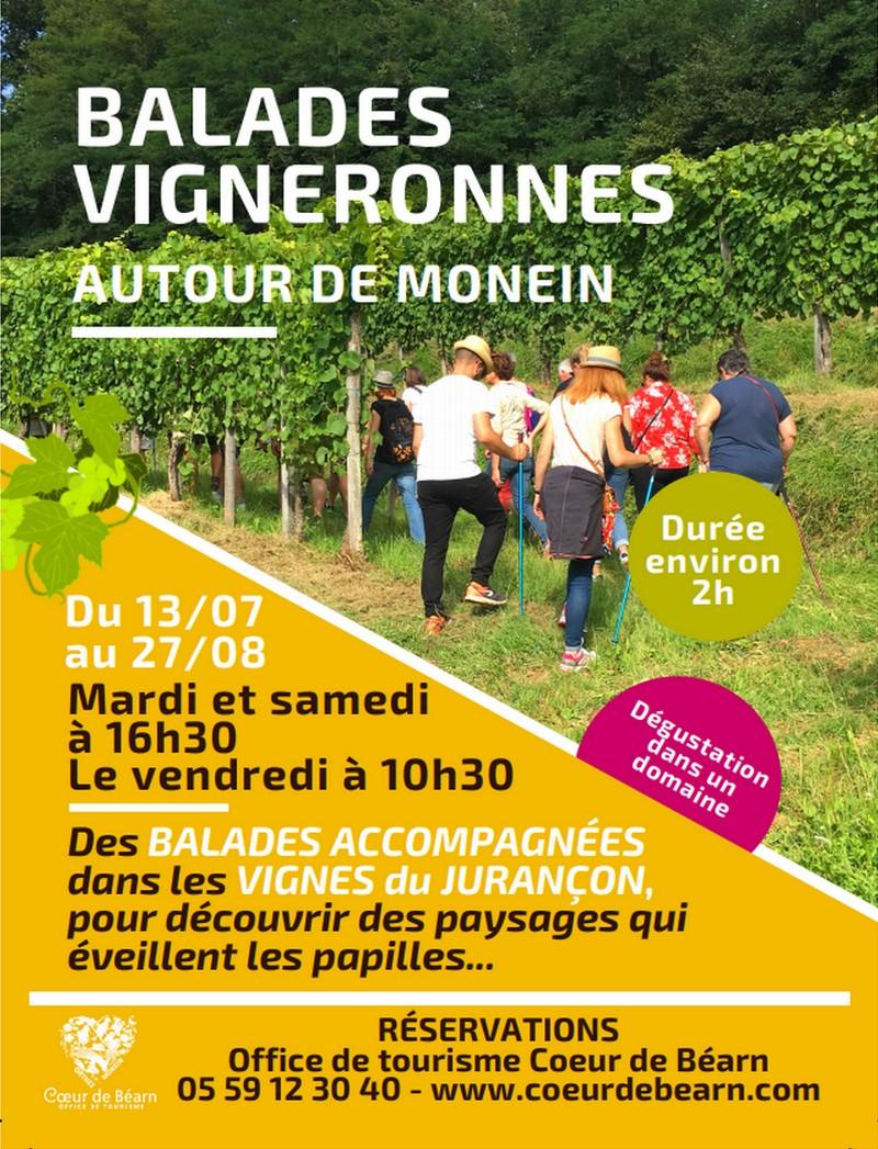 Balade vigneronne : Domaine Nigri - MONEIN