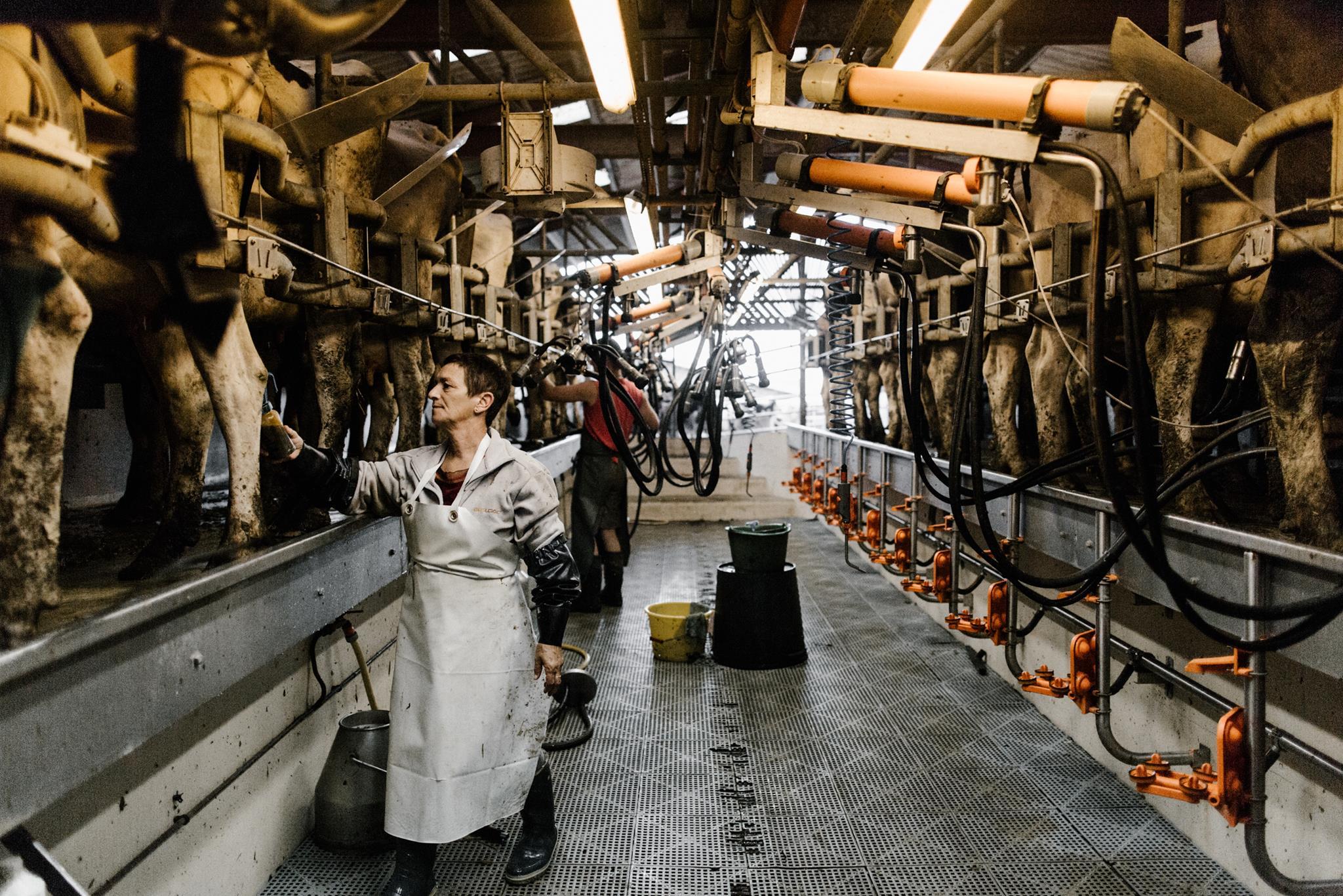 Rendez-vous à la ferme : Givrés des prés - CASTEIDE-CANDAU