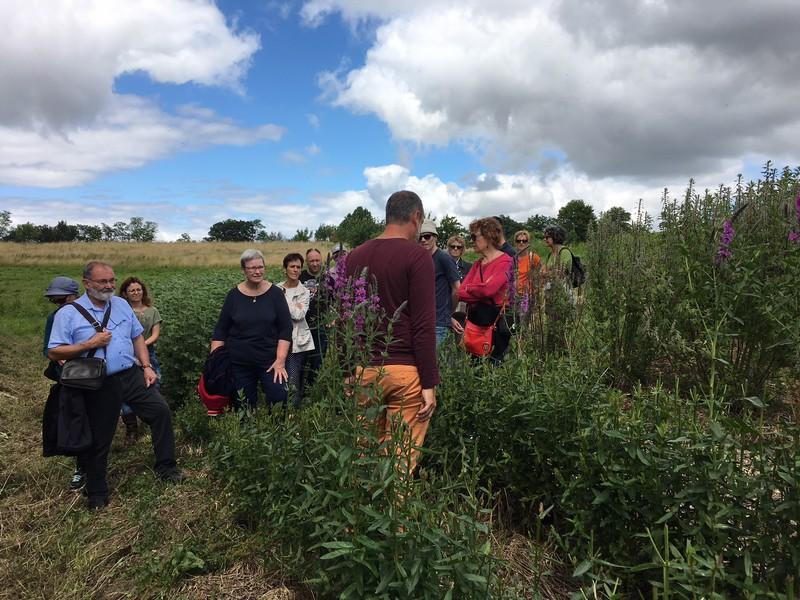 Marché à la ferme et visite des jardins - BAIGTS-DE-BEARN
