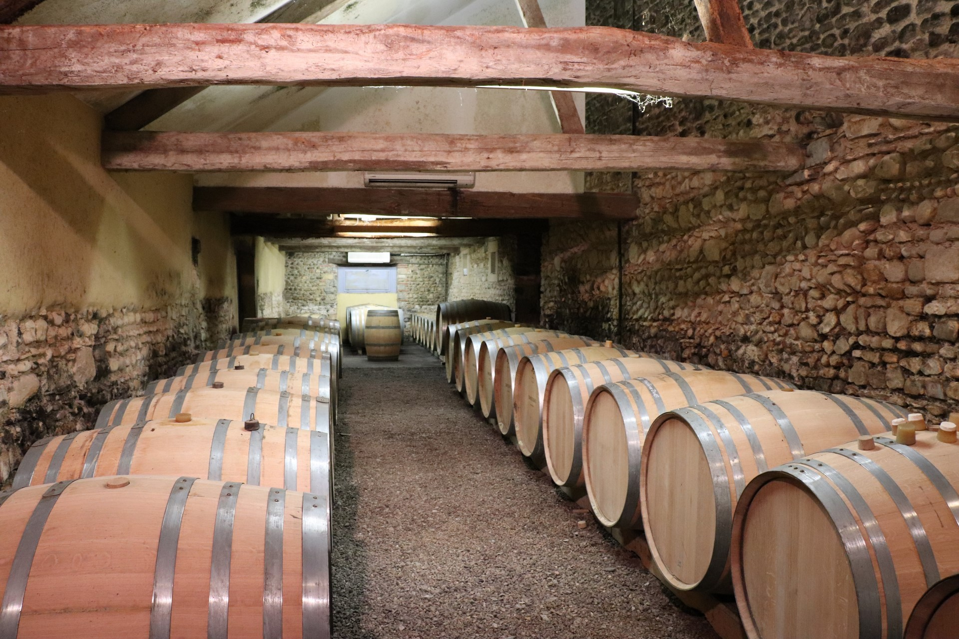 Visite et dégustation accord mets et vins : Domaine Bellegarde - MONEIN