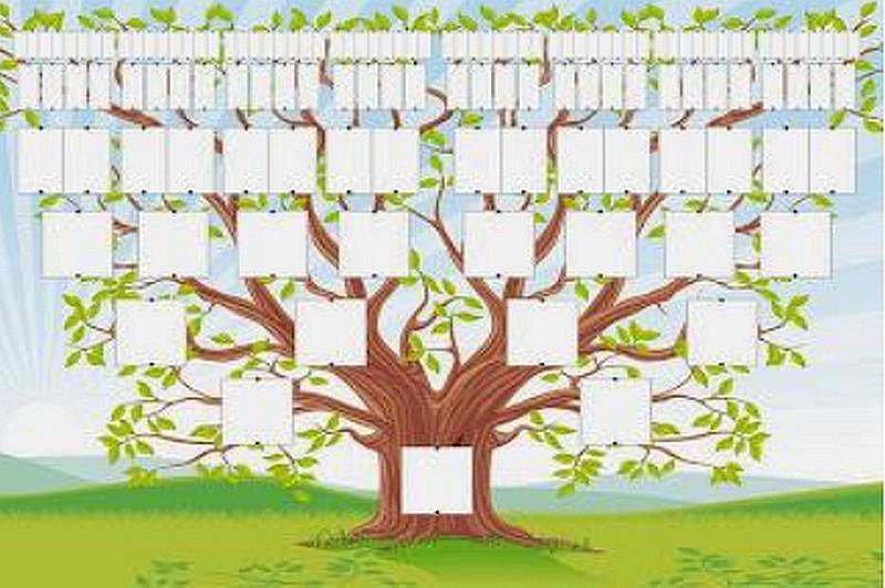 Conférence : Généalogie - Comment retrouver ses racines - CASTETIS