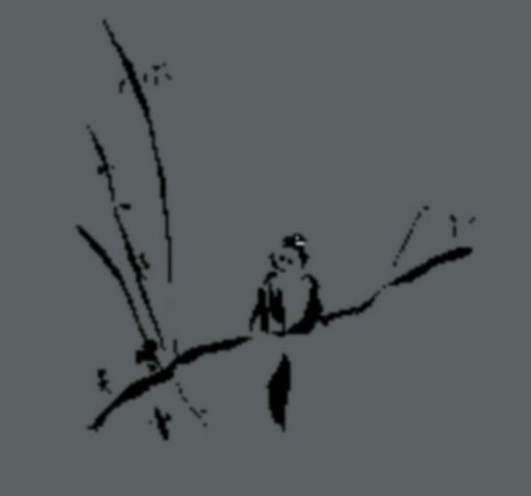 Vivre au naturel : Découverte de la sophrologie existentielle - ORTHEZ