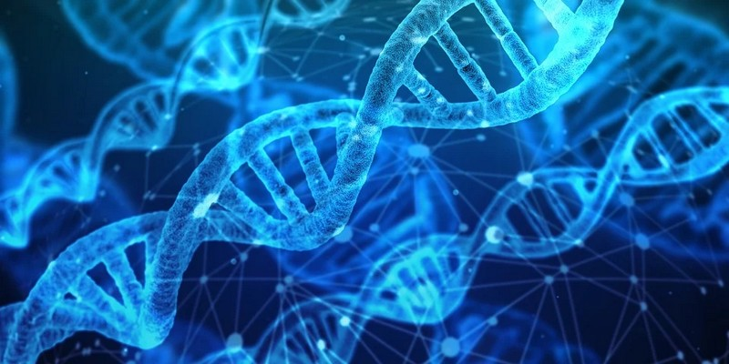 Atelier : Ecole de l'ADN : ADN ? Elémentaire mon cher Watson - MOURENX