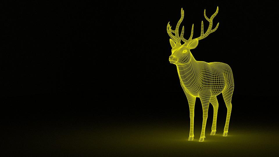 Atelier: Fabrique tes animaux préférés - MOURENX