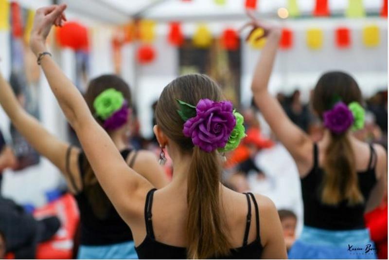 Ciné-Flamenco - MONEIN