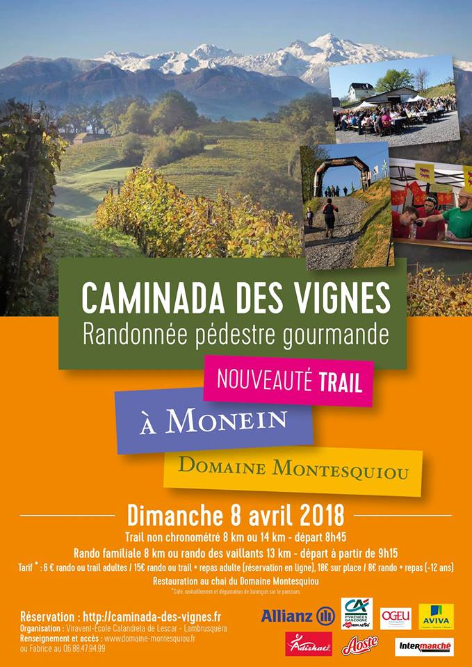 Caminada des vignes: Randonnée pédestre gourmande - MONEIN