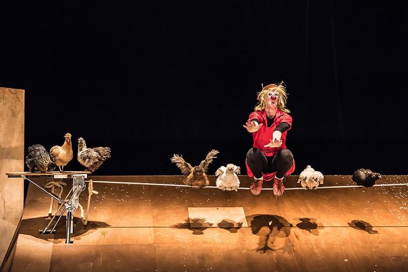 Les théâtrales : Danse avec les poules - MOURENX