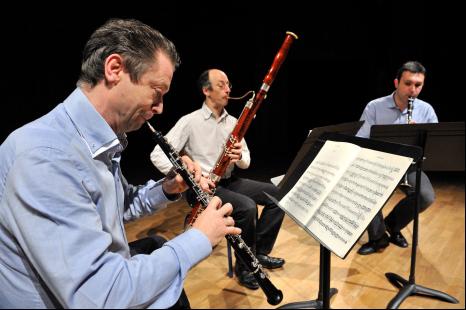 Partitions bucoliques - Concert : Ensemble Trielen - LABASTIDE-CEZERACQ