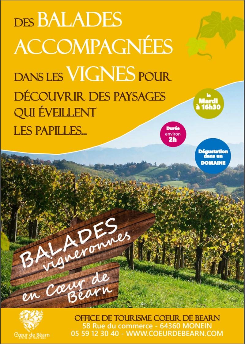 Balade vigneronne - MONEIN