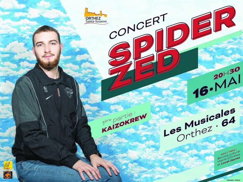 Concert : Spider Zed - ORTHEZ