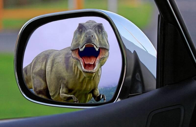 Atelier : Les dinosaures débarquent au MIX - MOURENX