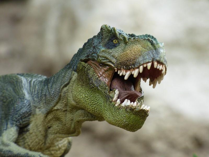 Les dinosaures débarquent au MIX - MOURENX
