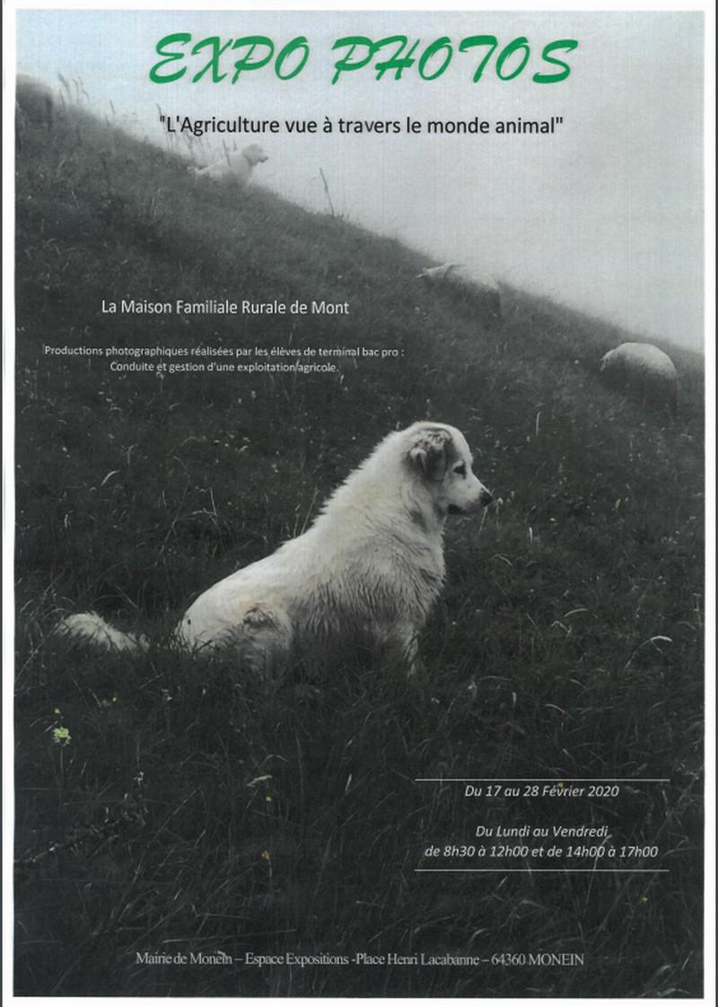 Exposition : L'agriculture vue à travers le monde animal - MONEIN