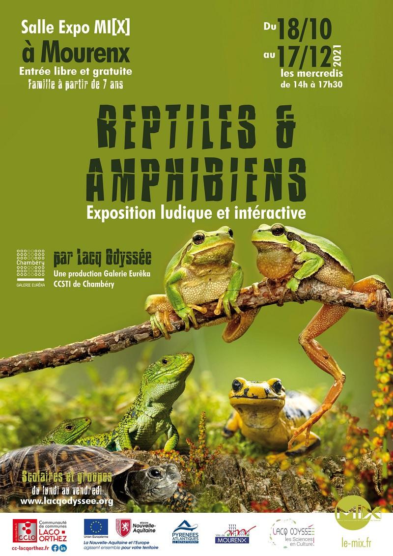 Exposition : Reptiles et amphibiens - MOURENX