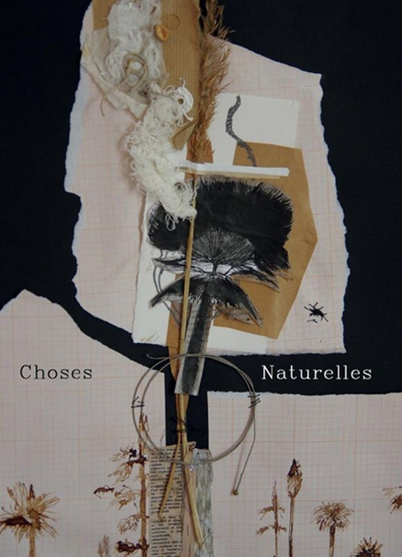 Exposition : Choses naturelles - MOURENX