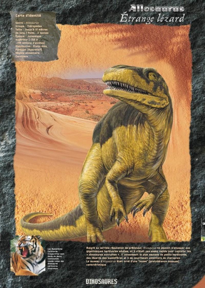 Exposition sur les dinosaures - MONEIN