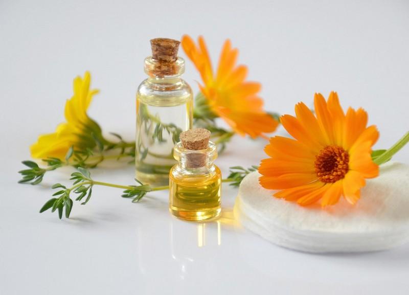 Pause à vivre : L'histoire des odeurs - LACOMMANDE