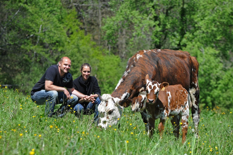 Rendez-vous à la ferme : Lait P'tits Béarnais - CASTETIS