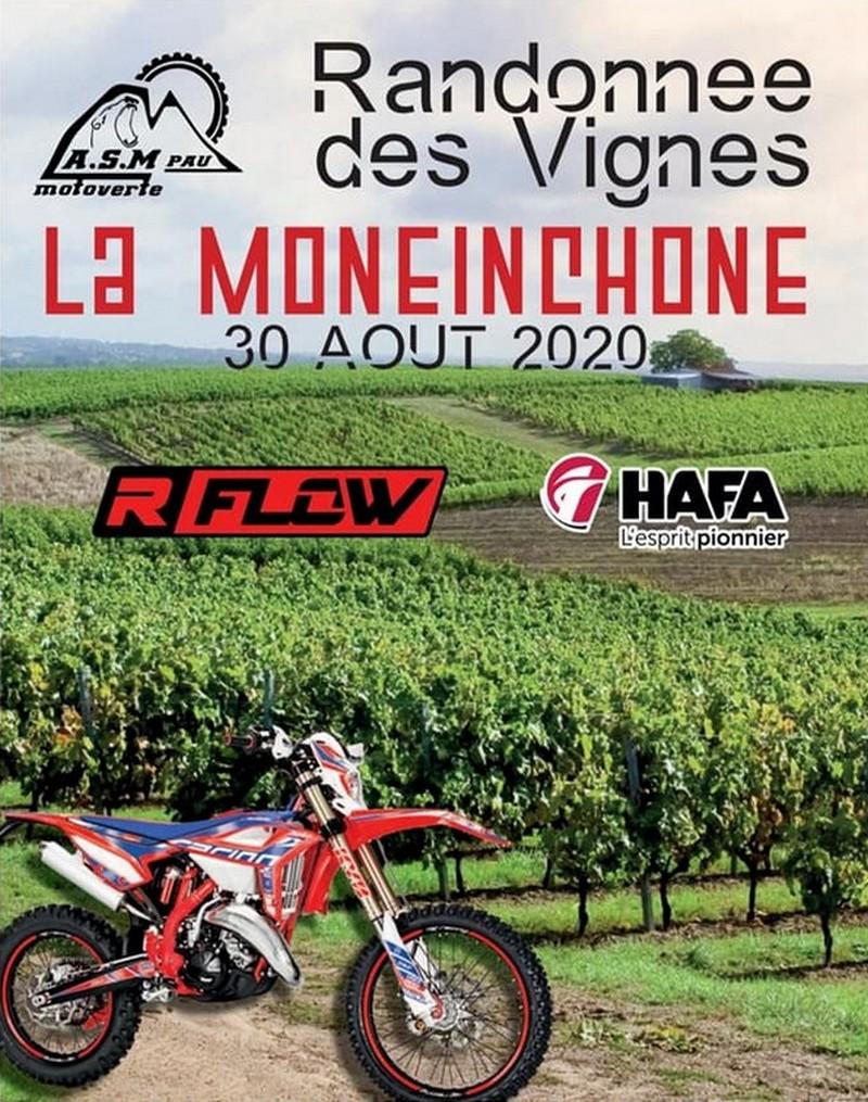 Randonnée des vignes : La Moneinchonne - MONEIN