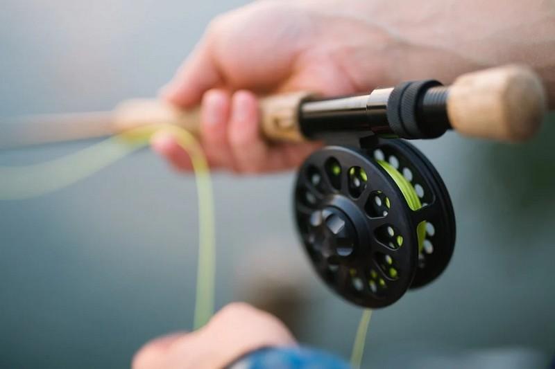 Concours de pêche de poissons-chat - ARTIX