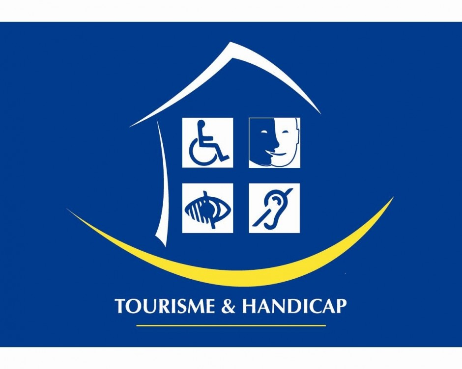 Handicap auditif, Handicap mental, Handicap moteur, Handicap visuel